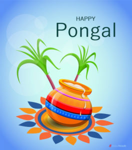 Happy Pongal 2020 – Wishes, Images, Quotes, HD Wallpapers, Stickers Download for Facebook & Whatsapp Status & DP Updates