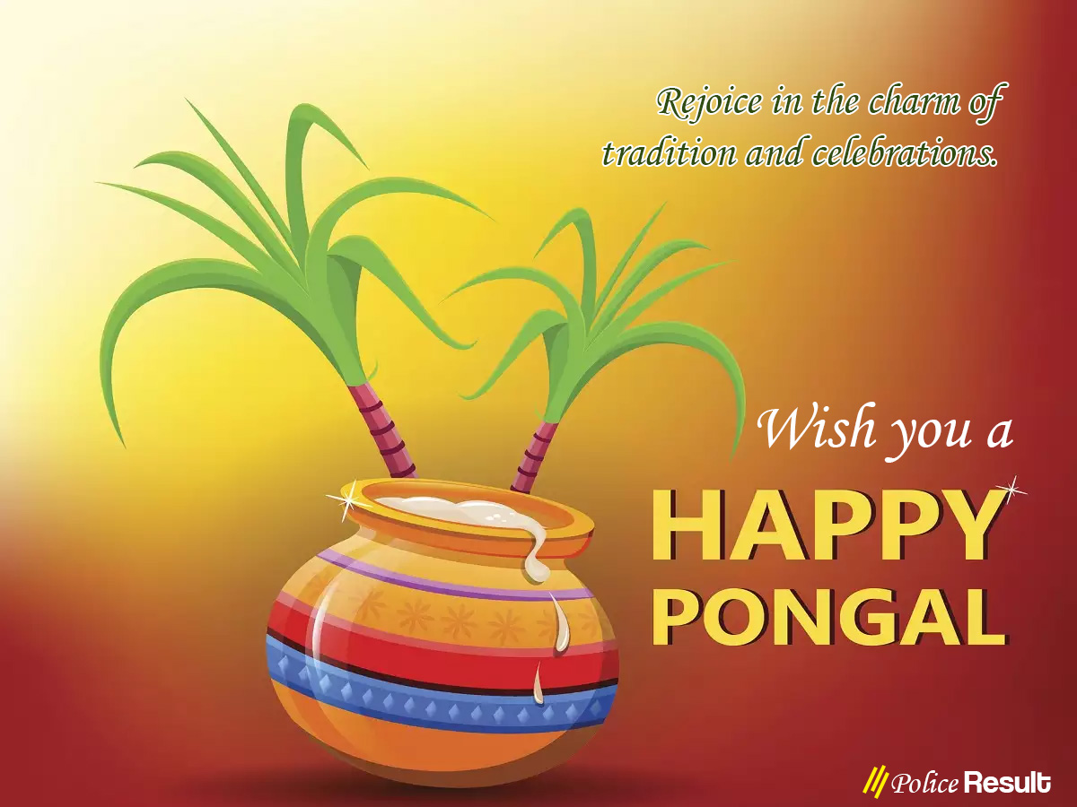 Happy Pongal 2020: Wishes, Messages, Quotes, Images, Facebook & Whatsapp status