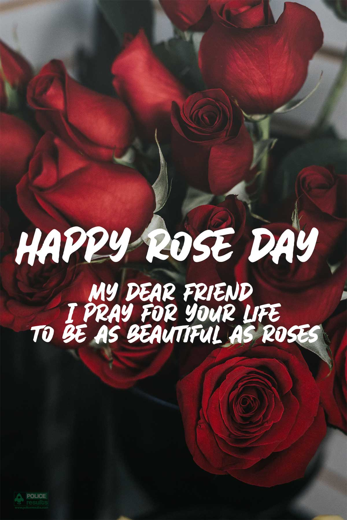 Happy Rose Day Quotes Wishes Images for Mother/ Father