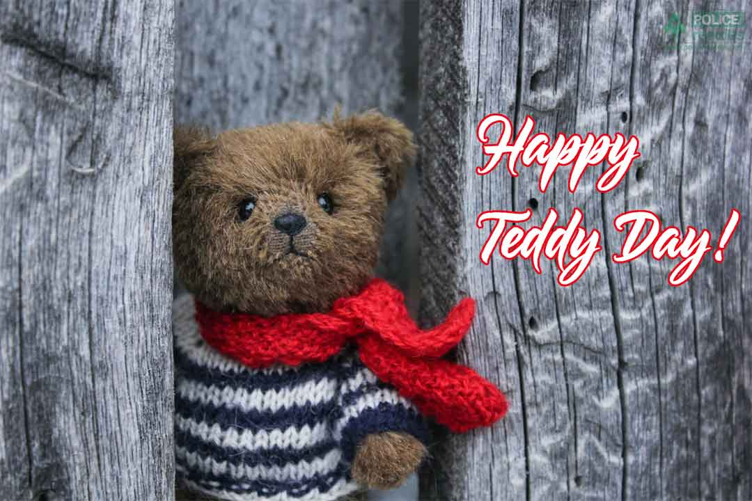 Happy Teddy Day Wishes Quotes Status for Love, Boyfriend, Girlfriend, Singles, Her/ Him