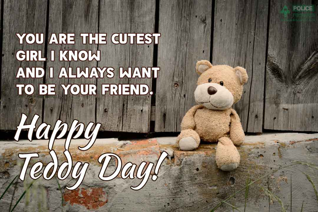 Happy Teddy Day Wishes Status for Instagram & FB Download
