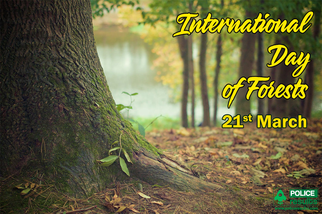 International Day of Forests 2020 Wishes Greetings for facebook status