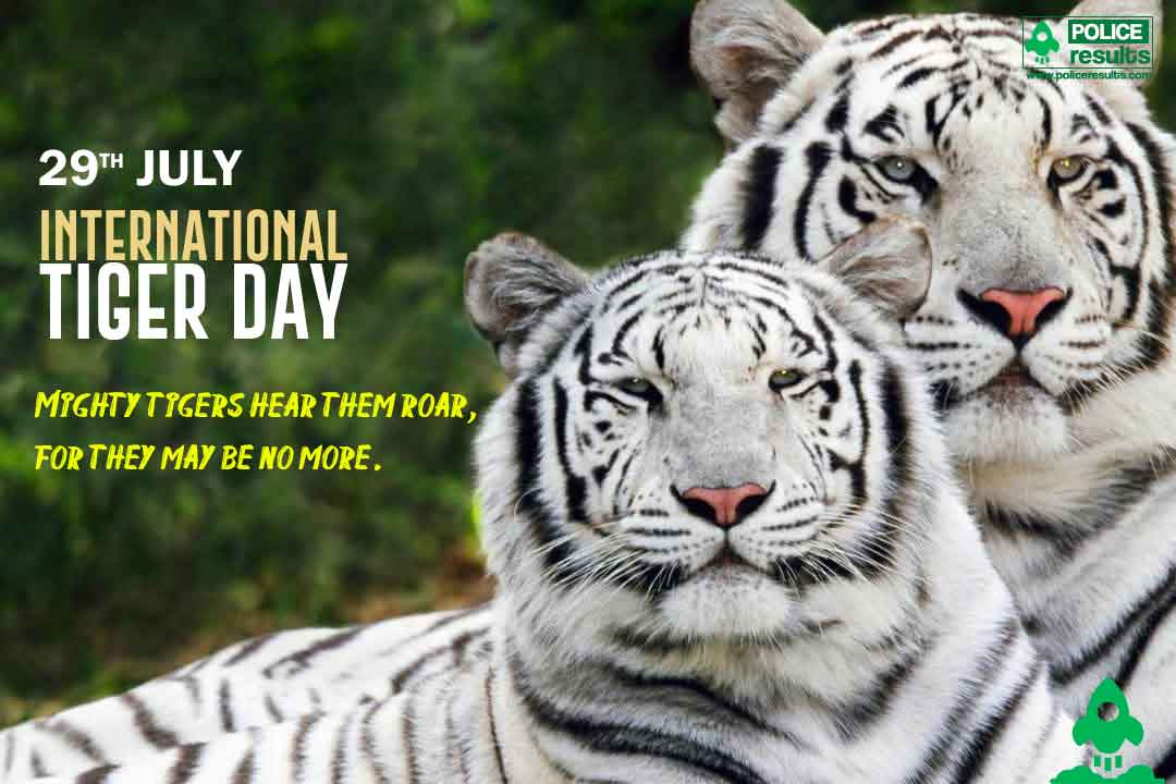 International Tiger Day Poster