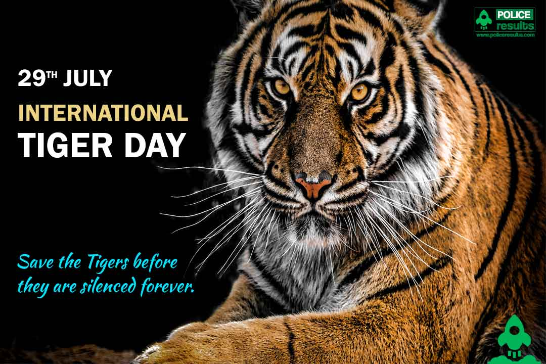 International Tiger Day 2020 : Theme, Quotes, Slogan, Quiz, Poster, Facts, Essay, Significance, History and Awareness Program