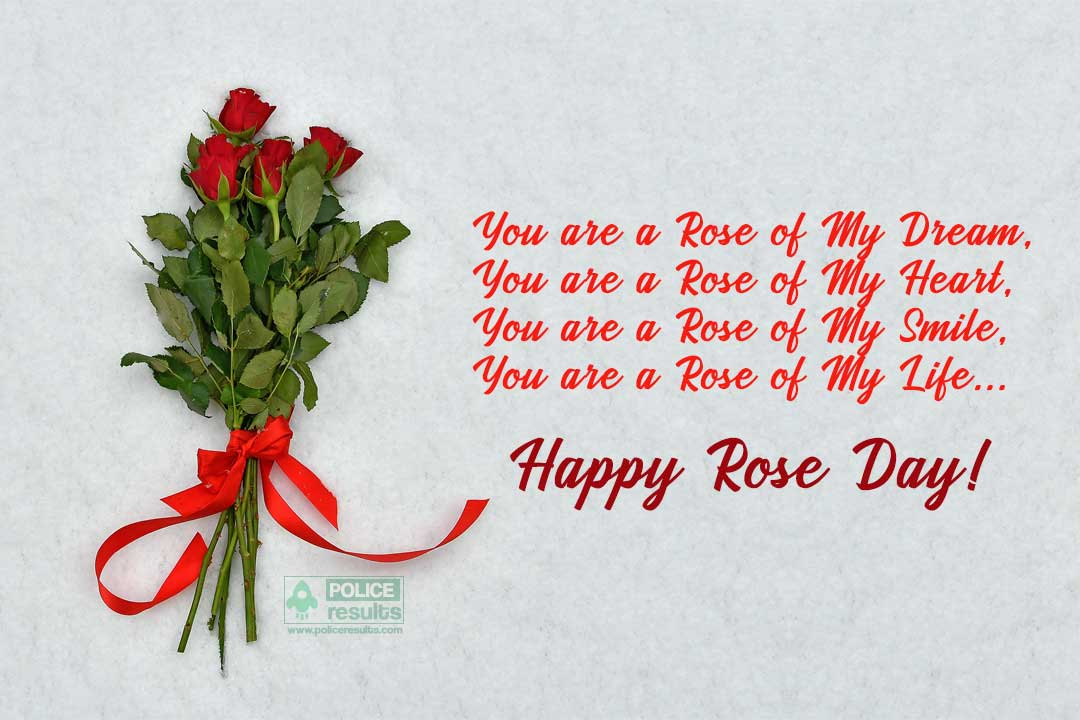 Rose Day Wishes Images Status for My Love