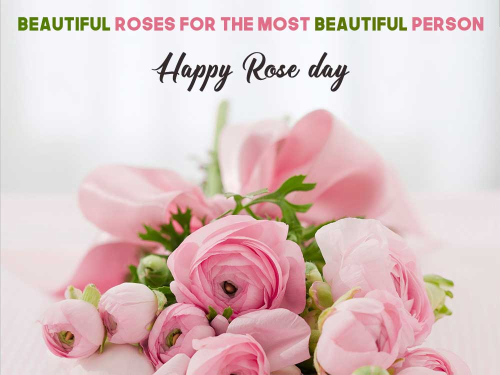 Short Rose Day Messages & Wishes