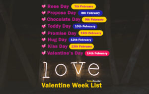 Valentine Week List 2020 : Happy Valentine Day List Dates & Schedule (7th February to 14th February)