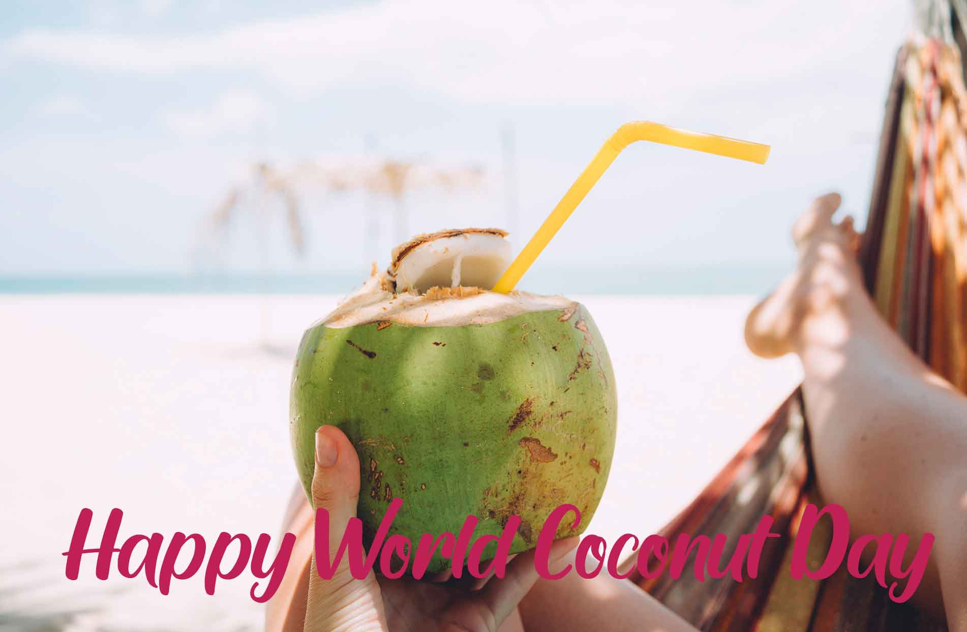 World Coconut DayQuotes Wishes : World Coconut Day 2020 Theme, SMS, Messages, Greetings HD Images, Wallpapers
