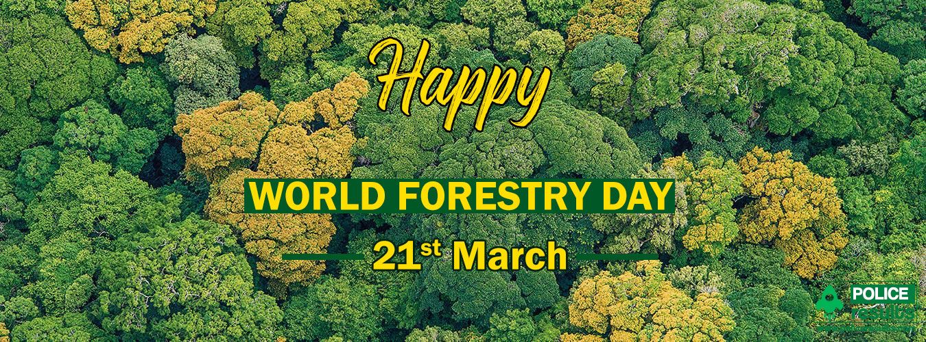 World Forestry Day : History