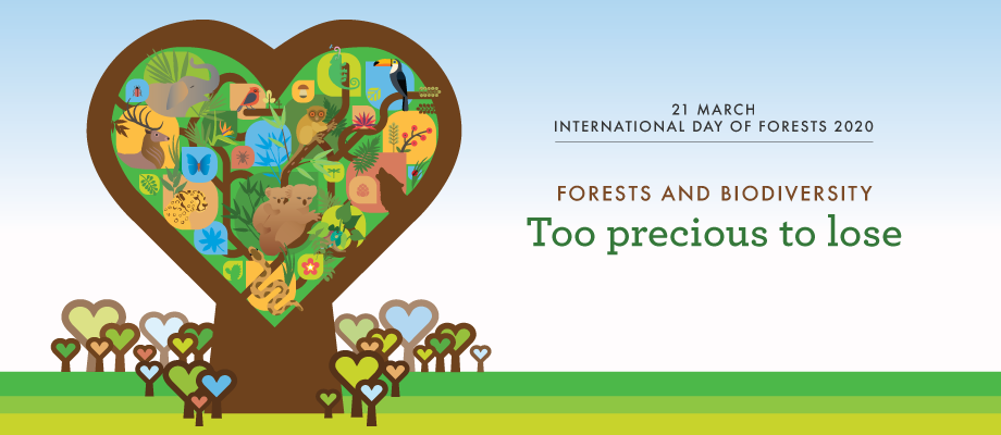 World Forestry Day International Day of Forests 21 March Poster