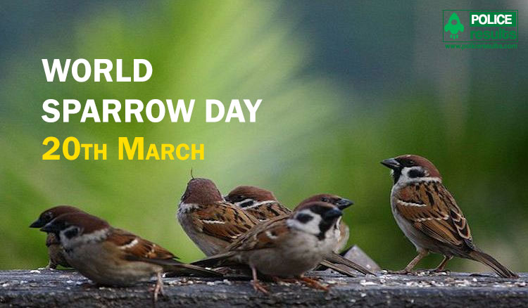 World Sparrow Day 2020 : Theme, Slogan, Poster, Significance, Messages, History and Awareness Program